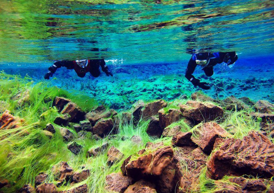Clearest waters in Silfra - The BestDay Trips From Reykjavik