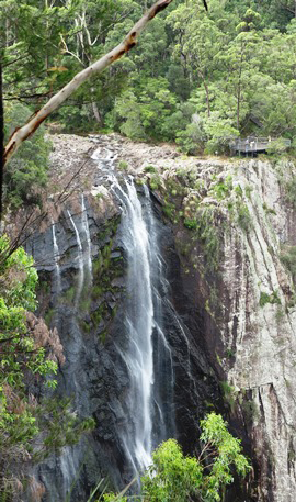 IMG_5363 - Minyon Falls - 270