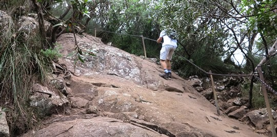 IMG_5339 - final ascent, Mt Warning - 540